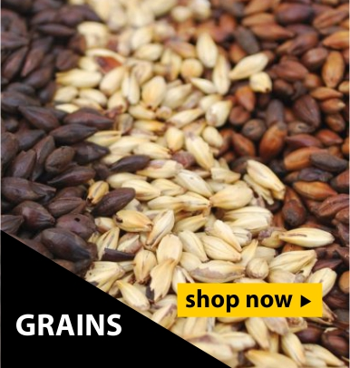 Beer malts and grains