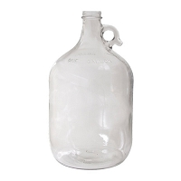Glass Jar - 1 gal. (Clear)